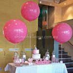 All Events - image 20140504_092042-1-1-150x150 on https://shivooballoons.com.au