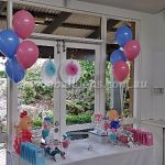 All Events - image baby-shower-candy-buffet-150x150 on https://shivooballoons.com.au