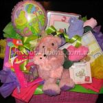View Our Birthday Parties - image mumma-bear-basket-150x150 on https://shivooballoons.com.au