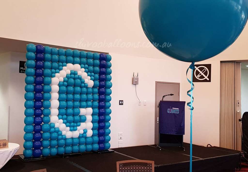 Corporate - image CE-13-1024x714 on https://shivooballoons.com.au